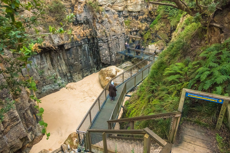 Remarkable Cave viewing platform Port Arthur Tasmania Blowhole Of Tasmania Tourist Attraction  Architecture Beauty In Nature Blowholes Built Structure Day Footbridge Formation Growth High Angle View Holiday In Tasmania Land Mountain Nature No People Outdoors Plant Railing Rock Rock Formation Staircase Steps And Staircases Tree Water