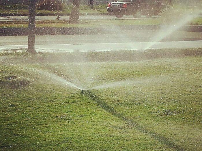 Watering Water
