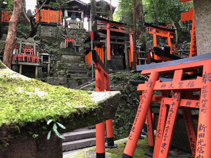 Fushimi Inari Shrine Torii Gate Place Of Worship Orange Color Religion Spirituality Nature No People
