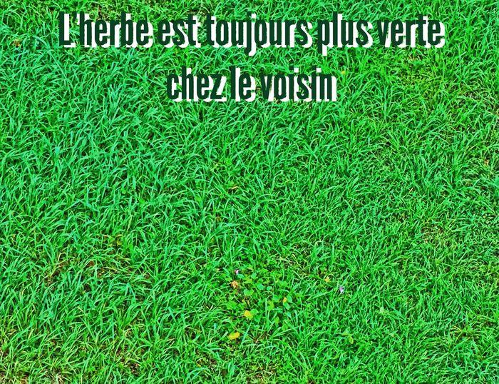 L'herbe est toujours plus verte chez le voisin ! Philosophy Philosophie Réflexion Personnelle
