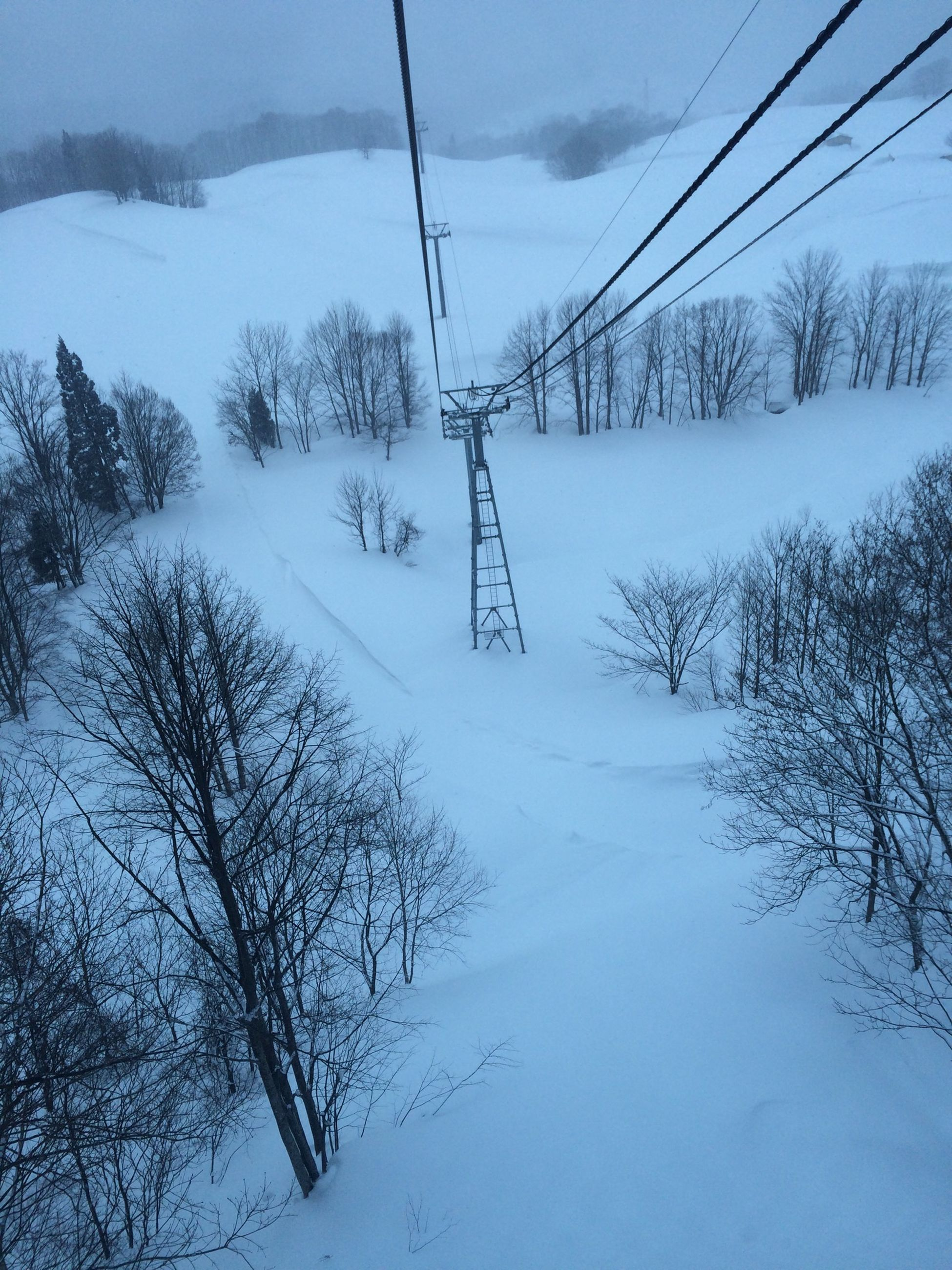 snow, winter, electricity pylon, power line, electricity, cold temperature, power supply, cable, connection, tree, fuel and power generation, weather, sky, season, tranquility, tranquil scene, technology, nature, overhead cable car, bare tree