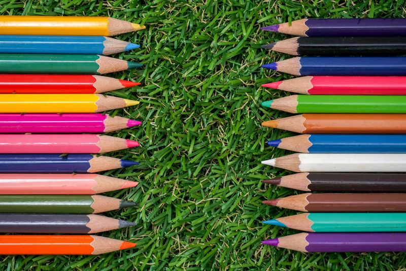 color pencil with green grass to make wallpaper Colors Conceptual Art EyeEm EyeEm Best Edits EyeEm Best Shots EyeEm Selects EyeEm Gallery EyeEmBestPics EyeEmNewHere Grass Art And Craft Background Photography Backgrounds Colorful Concert Photography Connection Desktop Wallpaper Eye4photography  Large Group Of Objects Multi Colored No People Pencil Pencil Drawing Wallpaper Wallpaper Background