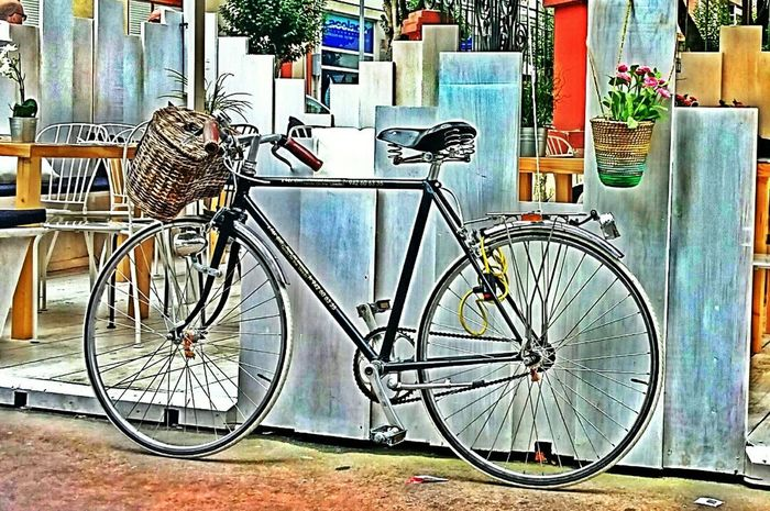 Bicycle Bicicleta Summertime Hollydays