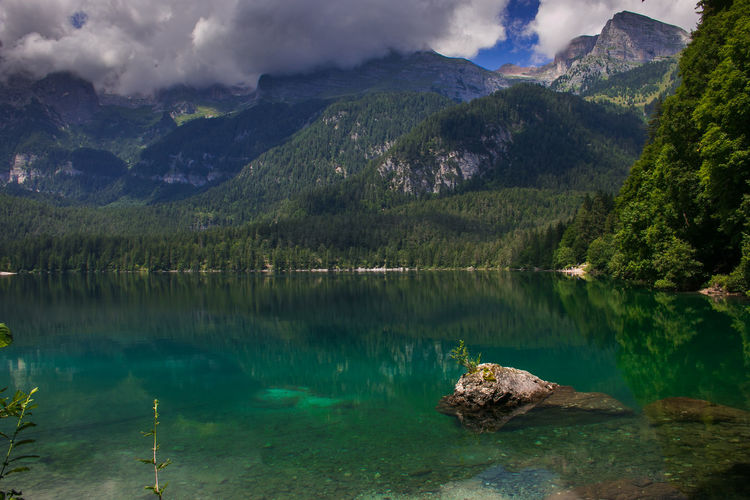 Amazing view of alpine lake in Trentino, Italy Alpine Desktop Dolomites Dolomiti Italy Lago Di Tovel Tovel Lake Trentino  Trentino Alto Adige Wood Alps Amazing Crystalline Water Dolomiti Forest Lake Landscape Mountain Mountain Range Nature Reflection Summer Tovel Turquoise Colored Wallpaper Water