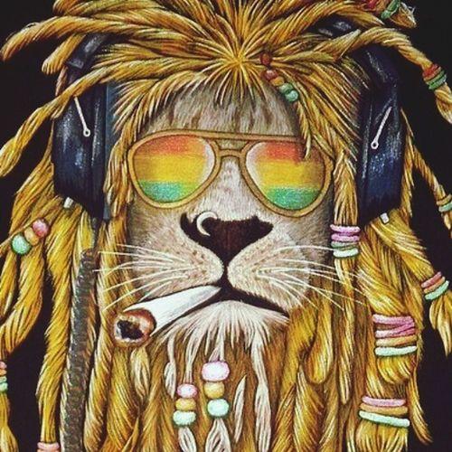 Лёва Lion First Eyeem Photo RASTA