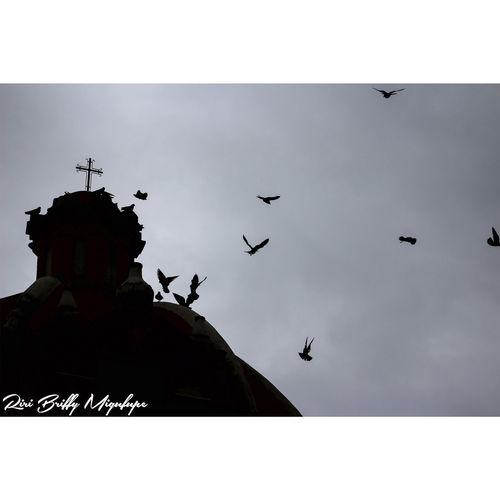 Iglesia Bird Sky Architecture Beautiful Culture Naolinco, Veracruz, Mexico. History Naolinco Naolinco De Victoria Naolinco