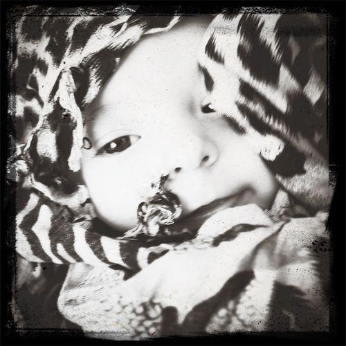 Mi leopardo