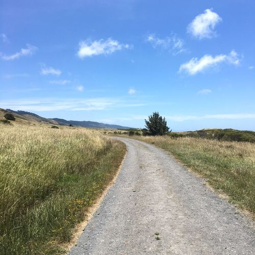 Empty road passing through field
