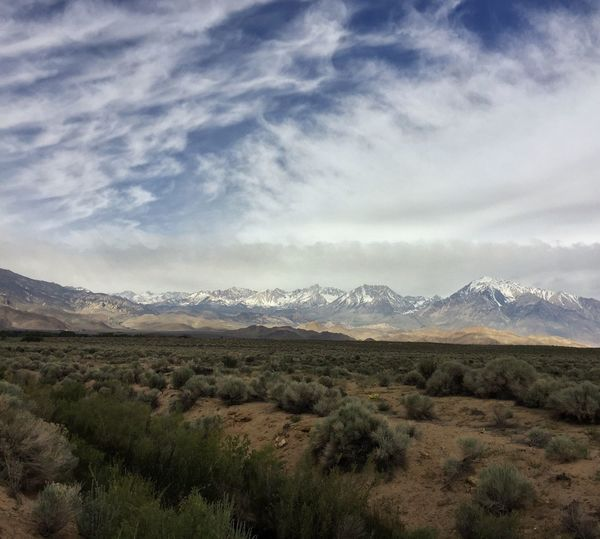 These views haven't gotten old in the almost 10 years I've lived in Bishop so I think it's safe say they never will. Mustlovemountains Outdoors Landscape_photography Landscapes IPhone Mobile Photography Eastern Sierra Mobilephotography Iphoneonly IPhoneography Project 365 Photo365 Mountains California Clouds And Sky