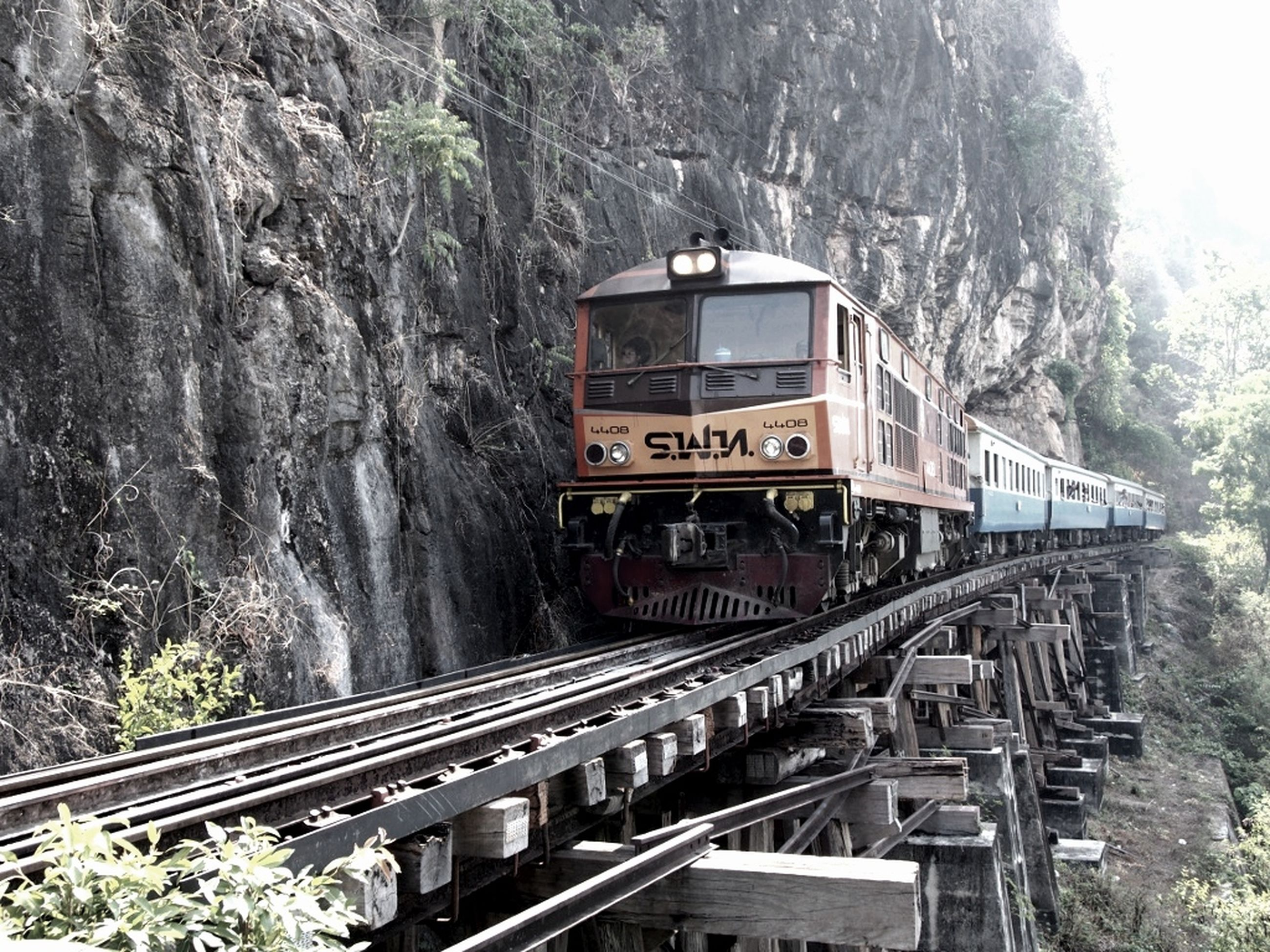 tree, mountain, railroad track, rail transportation, transportation, built structure, architecture, public transportation, forest, day, nature, train - vehicle, building exterior, travel, railing, outdoors, no people, tranquility, connection, mode of transport