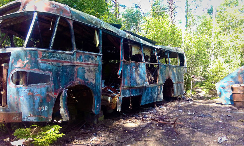 Junk Heap Junk Yard Abandoned Bus Damaged Day Decline Deterioration Forest Land Land Vehicle Mode Of Transportation Nature No People Obsolete Old Outdoors Plant Ruined Run-down Rusty Transportation Tree Vehicle Weathered