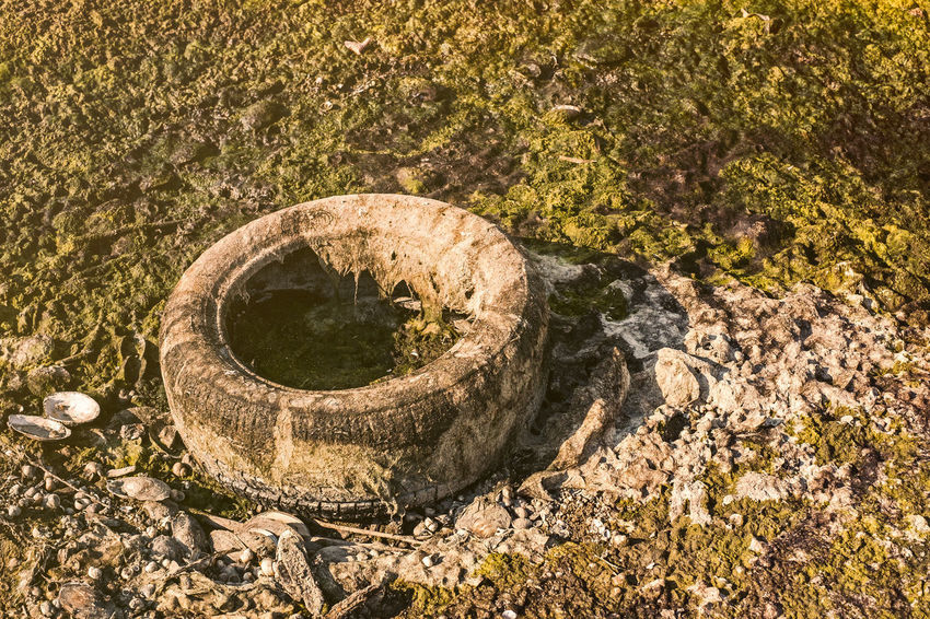An old car tire covered with algae polluting the beach Polution Is All Around The World Car Tire Close-up Day Garbage Nature No People Old Car Tire Old Tires Outdoors Poluted Earth Polution Polution Is Everywh Sandy Beach Tire Tire Track