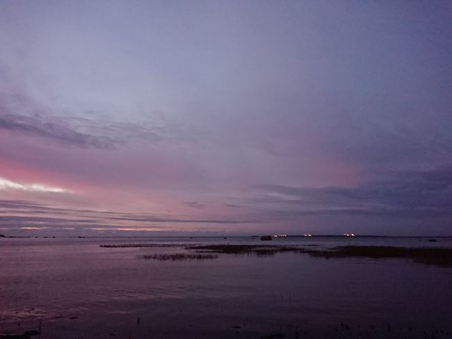 Water Sea Sunset Beach Low Tide Flamingo Awe Reflection Red Dramatic Sky