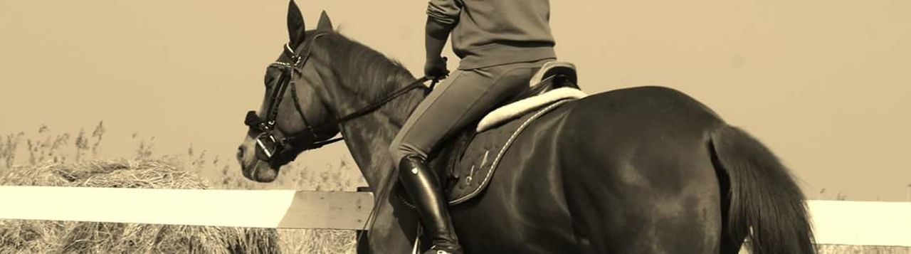 horse, low section, domestic animals, horseback riding, mammal, one animal, rear view, riding, men, one person, human leg, day, human body part, real people, outdoors, adult, people