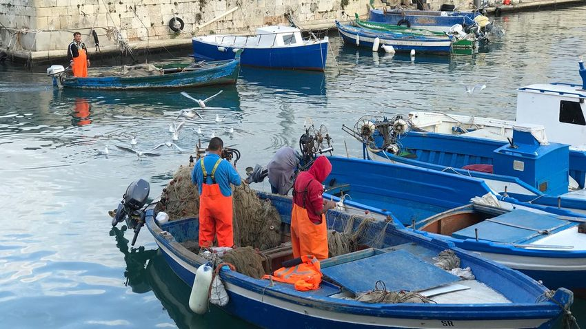 Marina - Ortigia Nautical Vessel Transportation Moored High Angle View Water Sea Occupation Day Adult Fisherman Harbor Outdoors Real People Men Adults Only Only Men Nature People Gondola - Traditional Boat Tranquility Fish Fishing Fishing Boat Fishermen