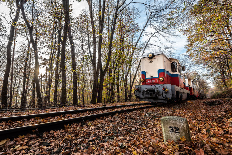 Nature Train Trees Tree Autumn Red Day Outdoors Forest Track Transportation Railway Public Transportation Plant Rail Road Railroad Track No People Rail Transportation Land Vehicle Mode Of Transportation Land Train - Vehicle Bare Tree Travel Fall