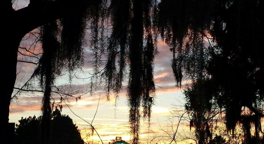 florida sunset First Eyeem Photo