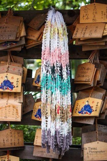 Japan Kon-Tiki: Your Adventure Otera