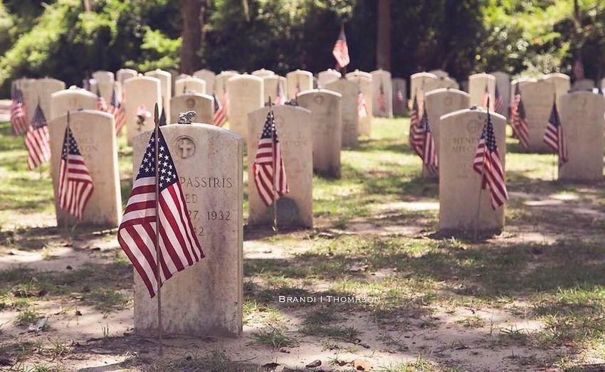 Row of flags at cemetery
