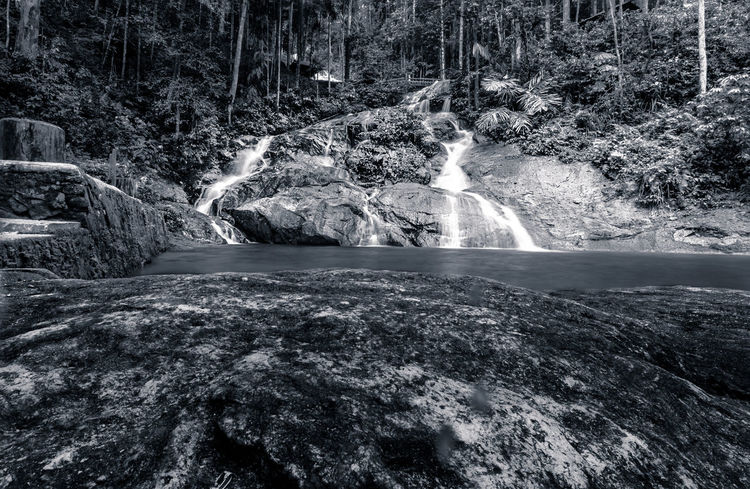 Multilevel waterfall in Kualalumpur Black & White Landscape_Collection Beauty In Nature Black And White Blackandwhite Day Flowing Water Forest Landscape Long Exposure Motion Nature No People Outdoors Scenics Tranquil Scene Tree Water Waterfall Waterfront