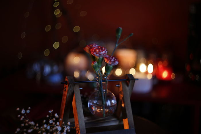 Bokeh Photography Color Red Bubbles Hidroponics Water Plant Sperimental Indoor Flower HUAWEI Photo Award: After Dark