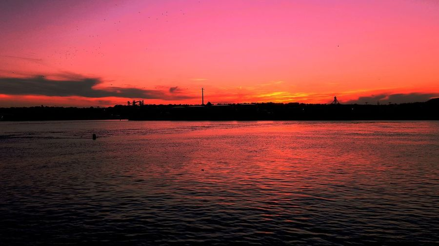 pink and orange sunset on Mississippi river in Dubuque, Iowa Dubuque Midwest Iowa EyeEmNewHere MidWest Iowa Nature EyeEm Selects Sunset Silhouettes Iowa Sky Water Sunset Multi Colored Red Lake Silhouette Rural Scene Reflection Orange Color Sky Astrology Sign Romantic Sky Astronomical Clock Maritime Provinces Low Tide Nova Scotia Astrology Dramatic Sky Atmospheric Mood Moody Sky Rippled Saturated Color Sky Only View Into Land Sagittarius Taurus