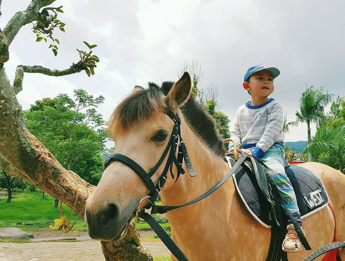 Horse Riding Horse Kid Kids Having Fun Fun Riding Sky Horseriding Showcase March Telling Stories Differently