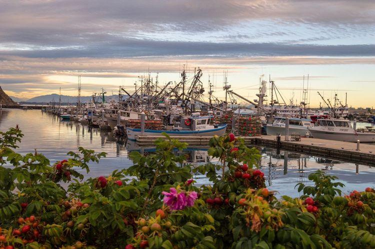Marina at Sunset. Anacortes, Washington, United States Water Boat Harbor Sky