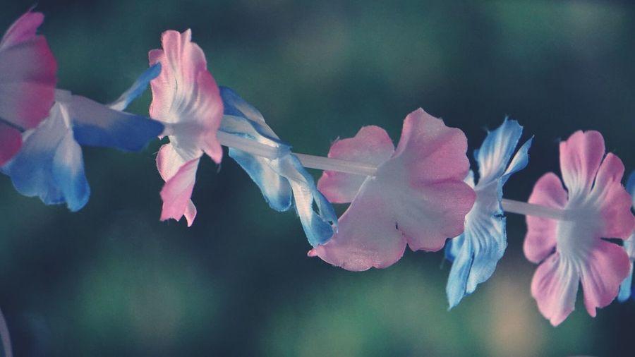 cheap flower