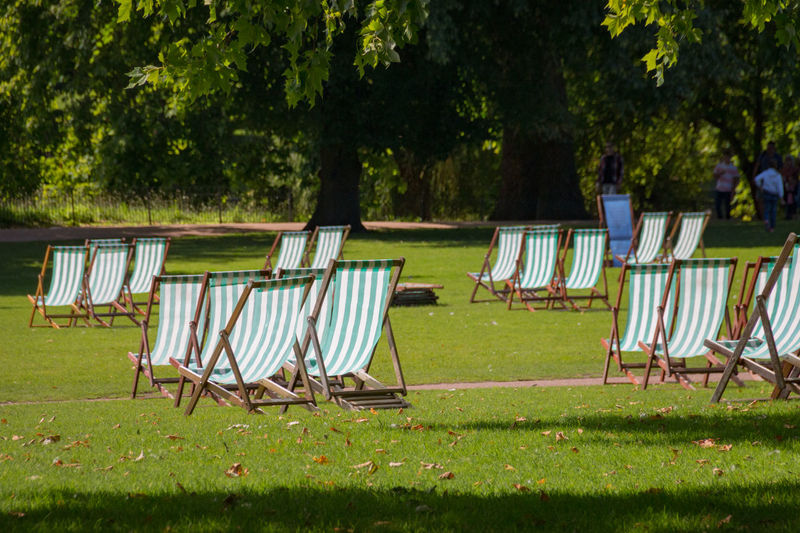 Empty chairs on field against trees