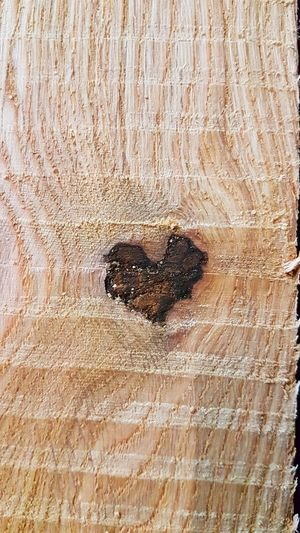 Oakheart Oak Backgrounds Full Frame Textured  Love Directly Above Heart Shape Close-up Knotted Wood Hardwood Rough