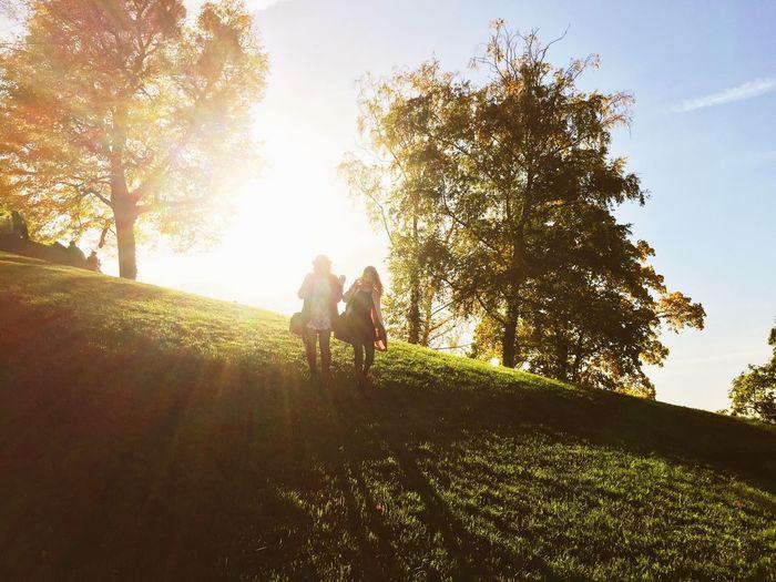 Global Eyeem Adventure - Stuttgartt Sun Nature Autumn Colors