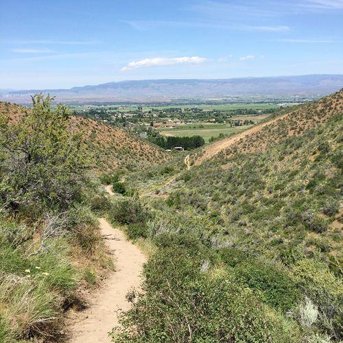 Manastash Ridge Nature Rural Scene On A Hike Walking Living And Dead