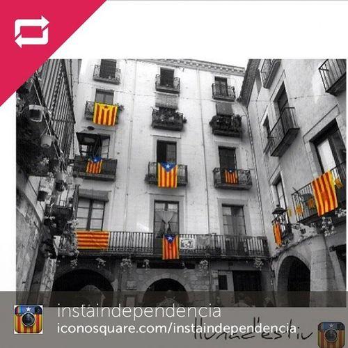 SUPER CONTENTA que els amics d @instaindependencia hagin escollit la meva imatge per formar part de la seva fantàstica galeria. Segui-los i etiqueteu Instaindependencia i la propera imatge pot ser la vostra