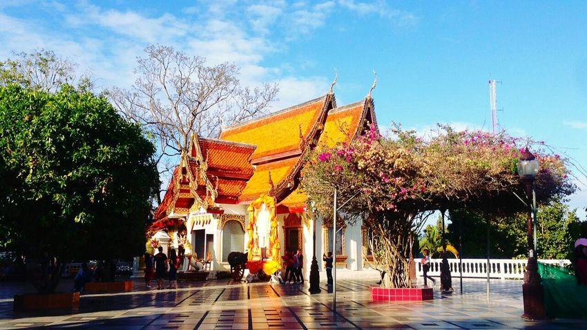 Chiangmai Watphrathatdoisuthep Eye4photography  EyeEm Gallery Chiangmaitrip2015