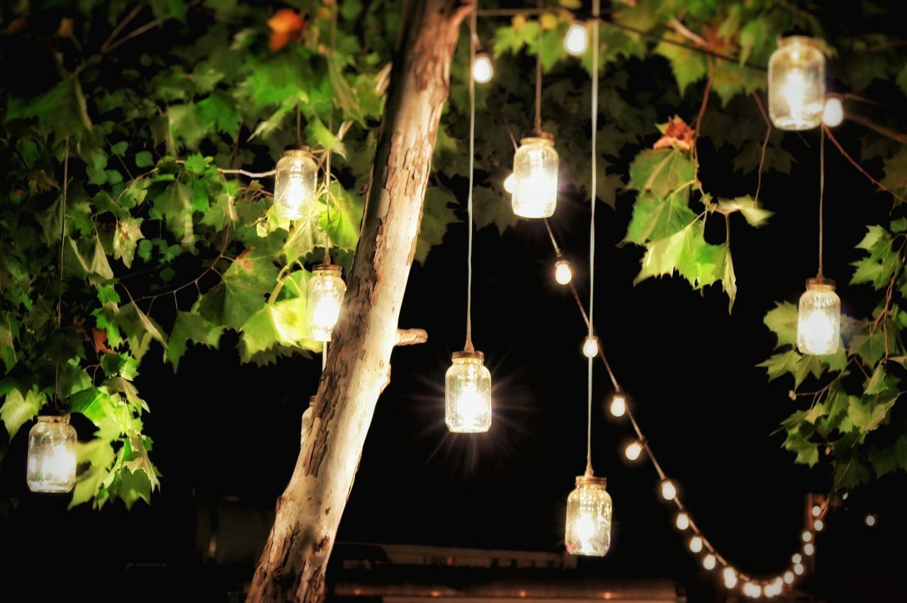 Illuminated decorations hanging from tree in yard at night