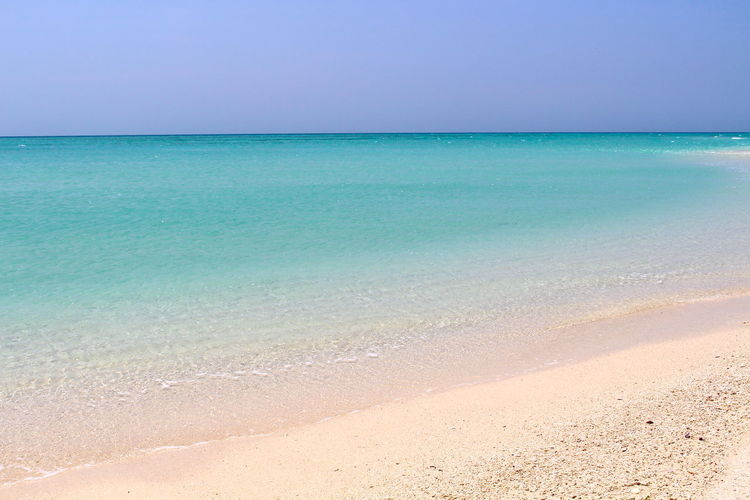 Indian Ocean's crystalline waters Water Sea Horizon Over Water Horizon Land Tranquility Beach Tranquil Scene Beauty In Nature Scenics - Nature Sky Sand Idyllic Nature Day No People Clear Sky Blue Holiday Outdoors Turquoise Colored Ocean