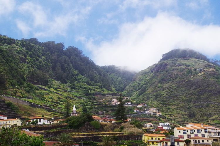 Uphill Porto Moniz, Madeira. Architecture City Cityscape Cloud - Sky Clouds Day Landscape Madeira Mountain Mountain Range Nature No People Ocean Outdoors Porto Moniz Porto Moniz Madeira Rock Formation Sea Sky Terraces Travel Destinations Tree Trees Vacations Winding Road