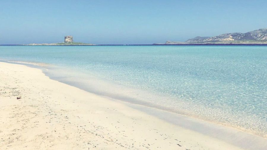 Sea Beach Sand Water Nature Clear Sky Tranquility Beauty In Nature Horizon Over Water No People Day Sky Outdoors Nature Nature Stintino Sardegna Sardinia