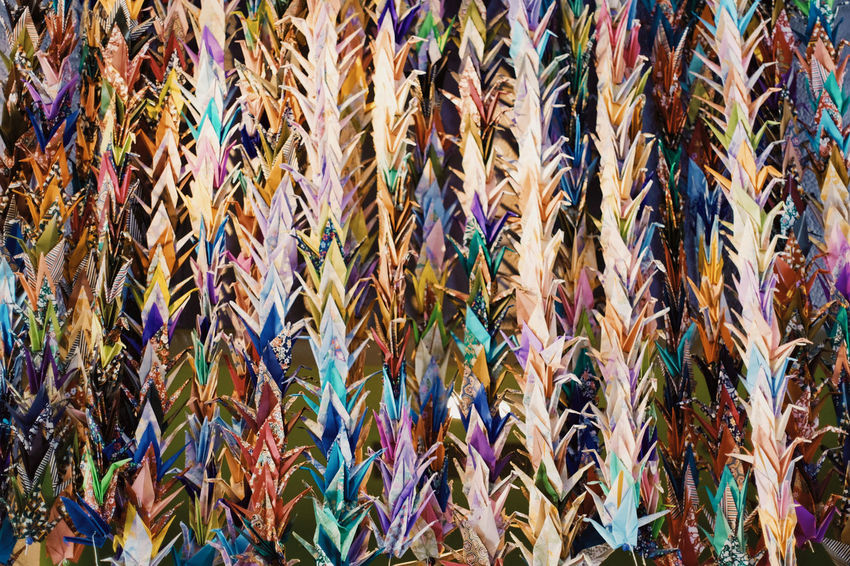 Garlands of origami cranes Full Frame Backgrounds Multi Colored Abundance No People Large Group Of Objects Close-up Cranes Paper Origami Craft Art Birds Animal Themes Decoration DIY Multicolors  USA California