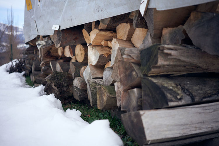 Stack of logs in snow