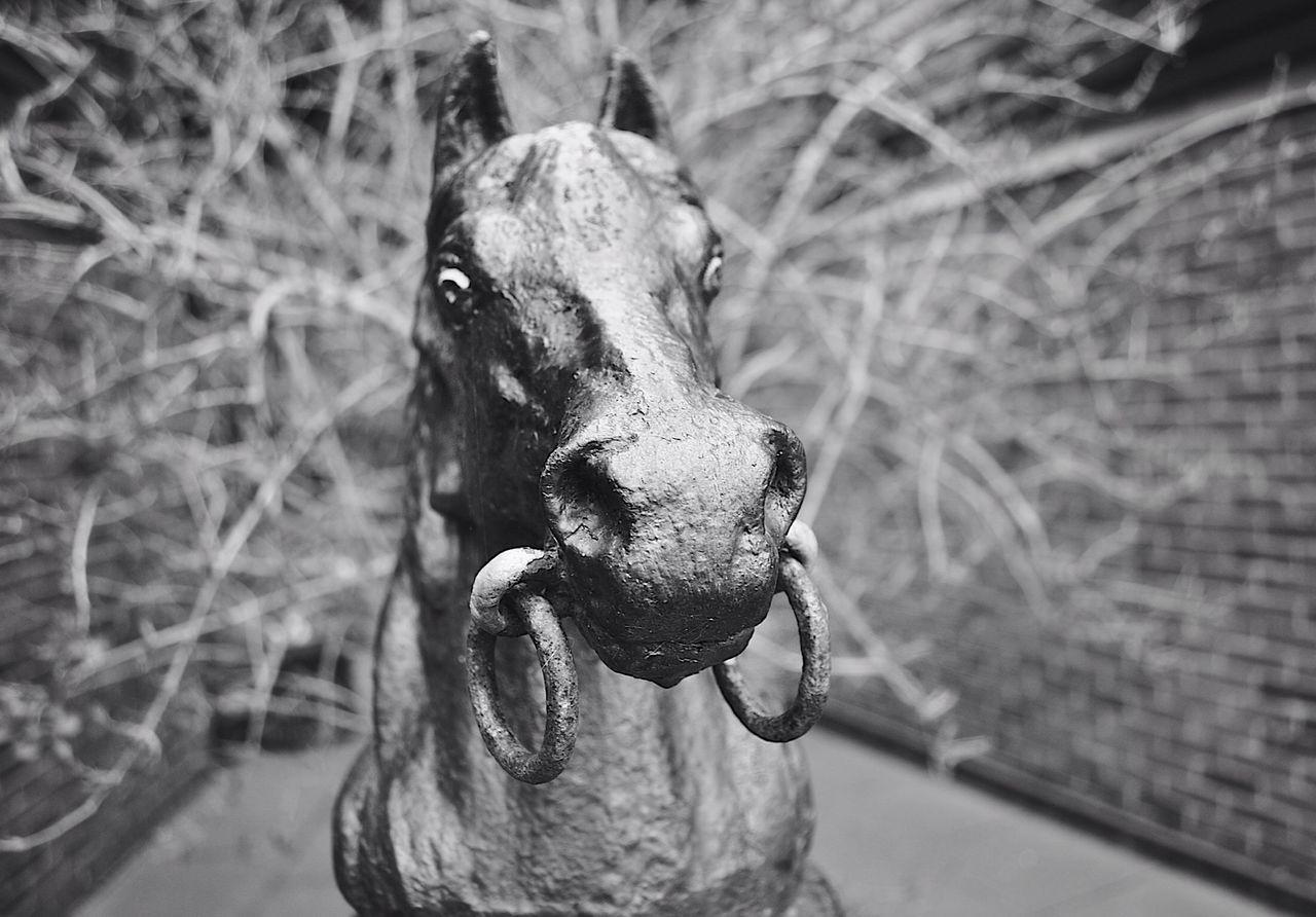 Close-Up Of Horse Sculpture