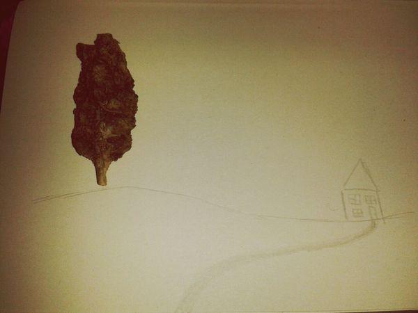 Weed Tree Liberty