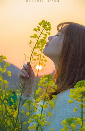 女孩 Girl Flowers The Sunset