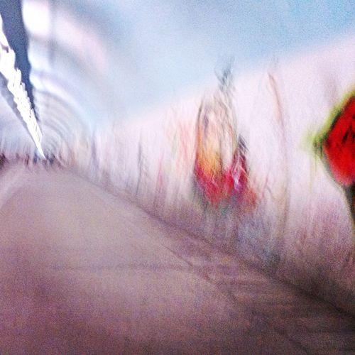 厦门大学•芙蓉隧道