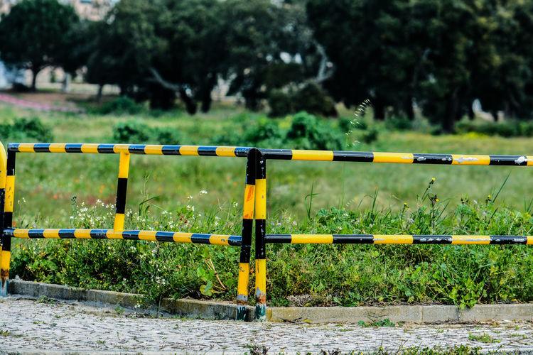 Yellow metal railing by plants