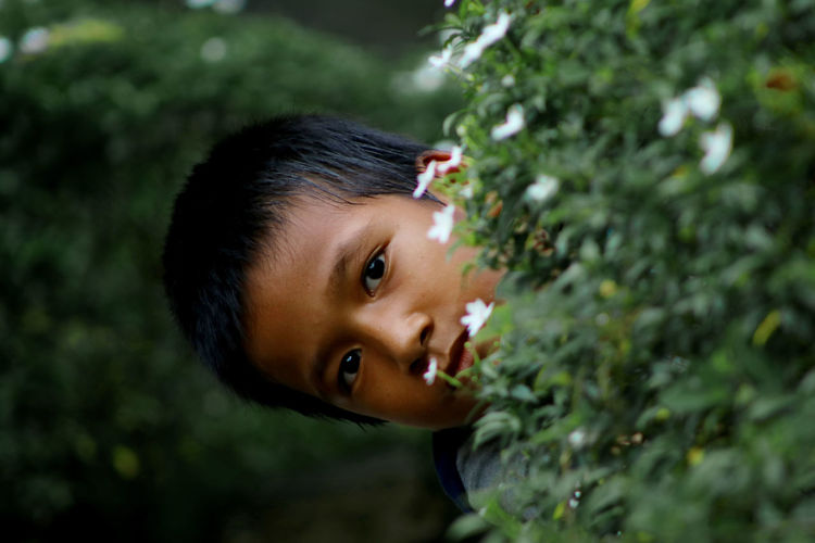 Portrait of boy peeking by plants