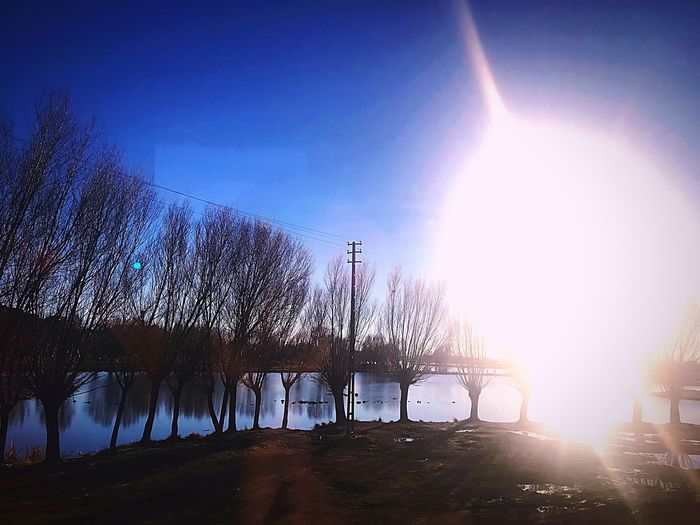 Kayseri Sky Tree Nature Plant Sunlight Architecture Built Structure Lens Flare Building Exterior Outdoors Blue Silhouette Sunbeam City Water Day No People Sun Environment Humanity Meets Technology #NotYourCliche Love Letter My Best Photo