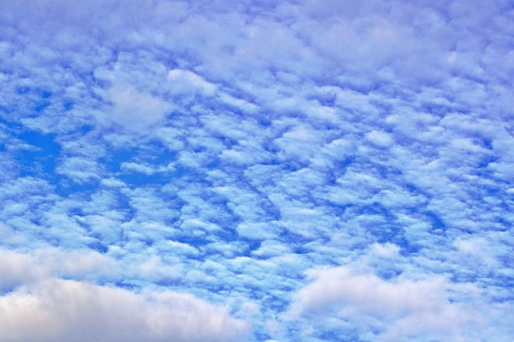 Cloud - Sky Sky Cloudscape Scenics - Nature Beauty In Nature Tranquil Scene Tranquility Backgrounds White Color Fluffy No People Outdoors Meteorology Environment Idyllic Full Frame Background Blue And White