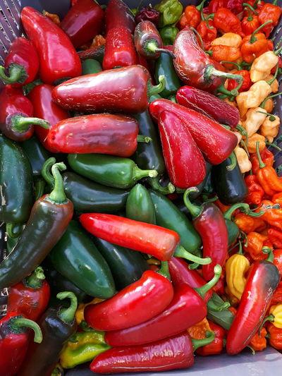 Full frame shot of vegetables in market for sale